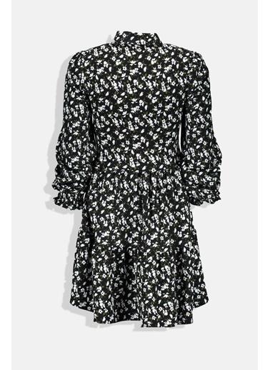 Collezione Siyah Gömlek Yaka Çiçek Desenli Düğmeli Kadın Elbise Siyah